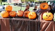 """Funeral services education booth featured pumkins carved by members and candles for sale to students. The """"Haunted Harvest"""" themed club day took place on Thusday in front of the student center. (Photo by Ashley Nanfria)"""