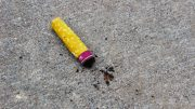 Cigarette butt left on campus. Due to ARC's ban on smoking, student's question where to smoke. (Photo by Lidiya Grib)
