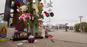 A southbound Meadowview line train travels behind a memorial placed near the crash site of an SUV driven by Louis Williams on Jan. 28. (Photo by Bryce Fraser)