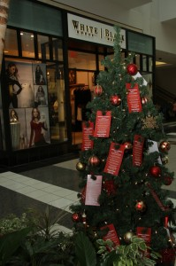 The Salvation Army lists out items that can be donated at this Angel Tree, located inside Arden Fair Mall. They have three separate categories for ages 3 to 16. (Photo by Stephanie Lee)