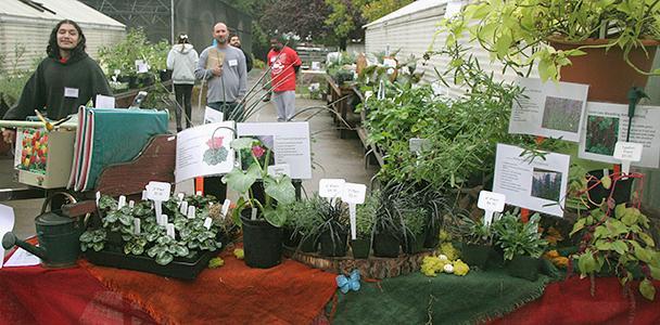 Horticulture department hosts plant sale