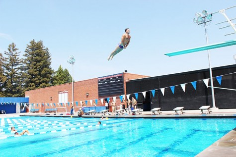 Yokoyama's first place finish in 1-meter dive leads ARC at state championships
