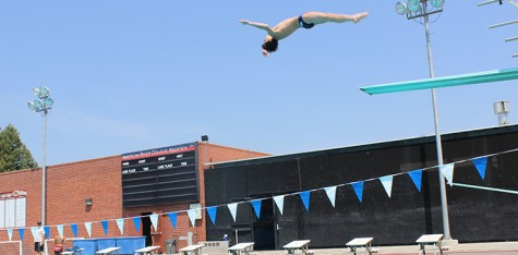 Five of six diving team members to compete in state swim championships