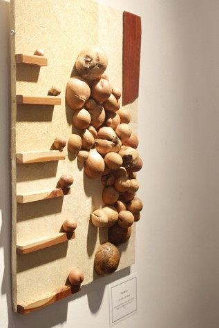 """Zen River"" by Alexander Clay harper is an art pieces that utilizes oak galls. Harper said that his art work was mostly inspired by nature.  (Photo by Joseph Daniels)"