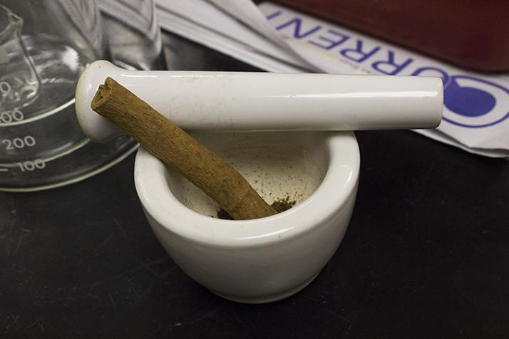 A whole cinnamon stick sits ready to be ground up for distillation. Students extracted the essential oil, cinnamaldehyde, from the sticks in their organic chemistry lab. (Photo by Timothy Lipuma)
