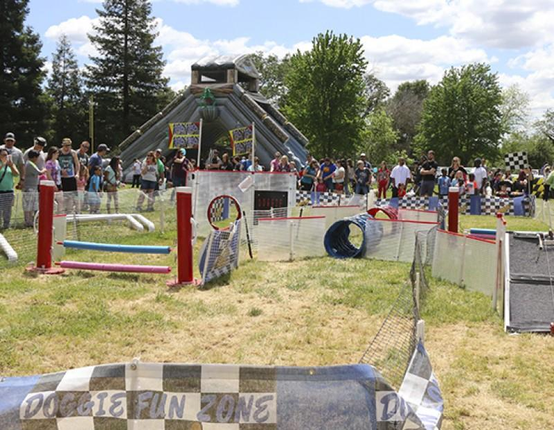 The Doggie Fun Obstacle Course was opened for all dogs to try out at Pet-A-Palooza on March 23, 2016.  Pet-A-Palooza welcomed all pets and owners and was located at Rusch Park in Citrus Heights, California. (Photo by Bailey Carpenter)