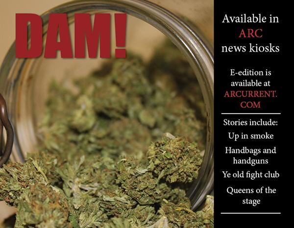 DAM! Vol. 3 Issue 1 e-edition on issuu.com now!
