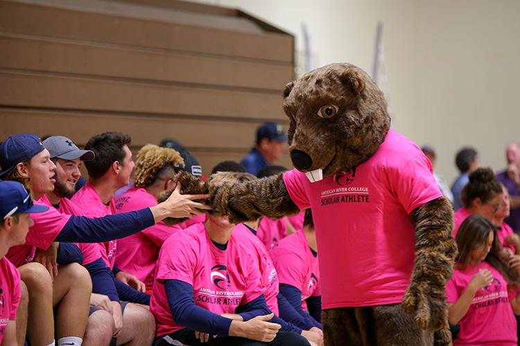The Beaver, American River Colleges new mascot, high fives a scholar athlete at the fall sports preview on August 26, 2016. (Photo by Kyle Elsasser)