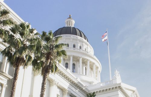 Governor Jerry Brown vetoed Assembly Bill 2017 this weekend, ending a long fight for the passage of the bill. (Photo by Hannah Darden)