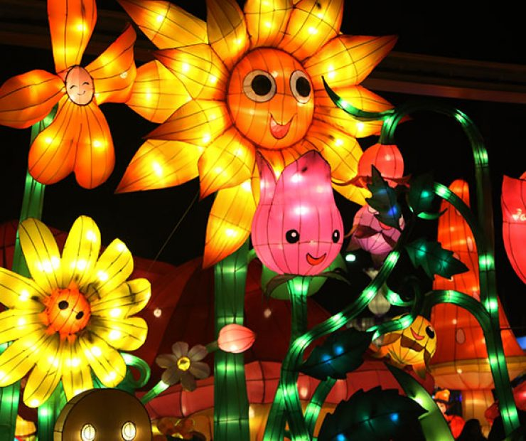 "Lit up flowers for  ""Global Winter Wonderland"" at Cal Expo on Sunday in Sacramento, Calif. (Photo by Cheyenne Drury)"
