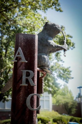 A statue of Bucky the Beaver sits at American River College in Sacramento, California on Sept.13, 2017. Bucky the Beaver is the school's mascot. (Photo by Ashley Hayes-Stone)