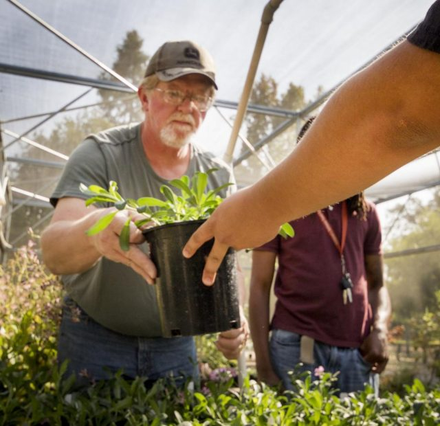 Brad Mohening is handed a plant at in the Horticulture Department at American River College on Oct. 10, 2017.