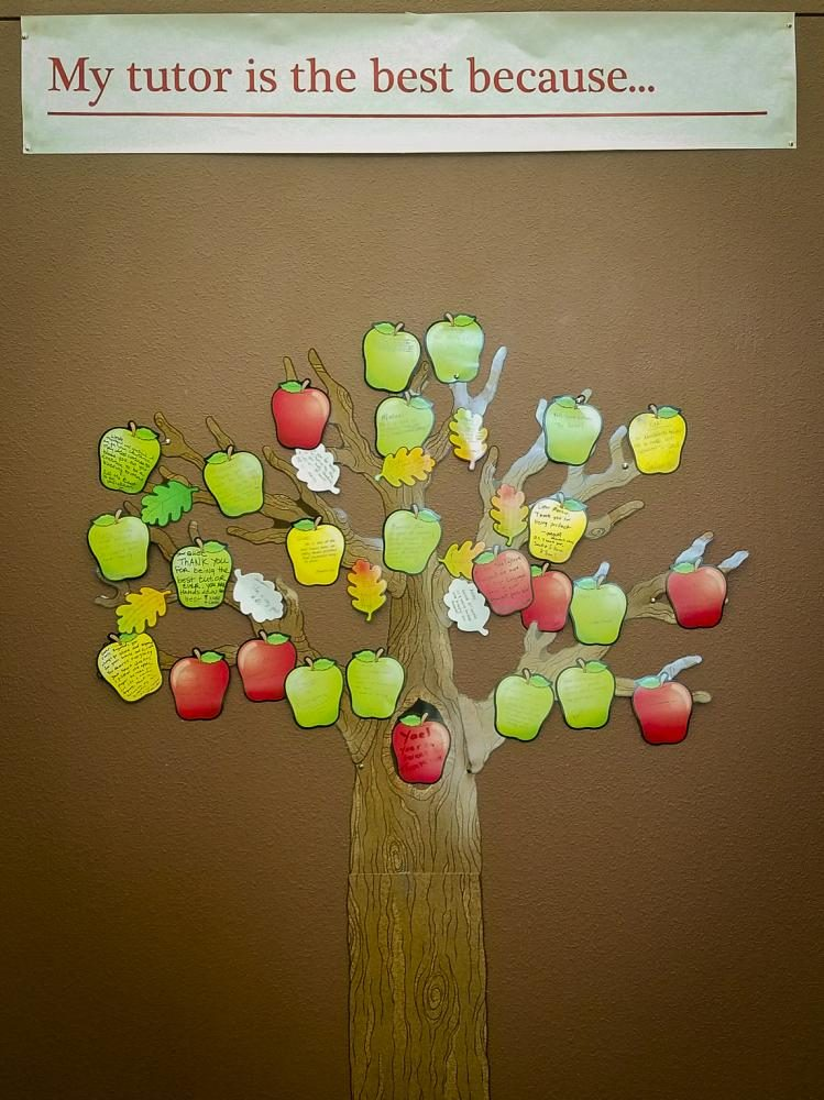 A paper apple tree hangs on a wall at the Learning Resource Center at American River College on Oct. 3, 2017.  It is tutor appreciation week and students are welcome to display their gratitude for their tutors. (Photo by Ashley Hayes-Stone)