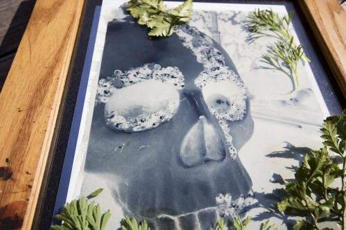 The alternative progress photography class, ARTPH 320, lays out their cyanotype digital negatives out in the sun at American River College on Feb. 4 in Sacramento, California. (Photo by Ashley Hayes-Stone)