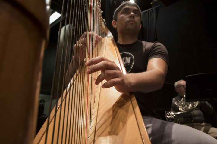 Derrick Booth plays the harp during the American River College Orchestra's rehearsal on Mar. 8 at American River College.(Photo by Ashley Hayes-Stone)