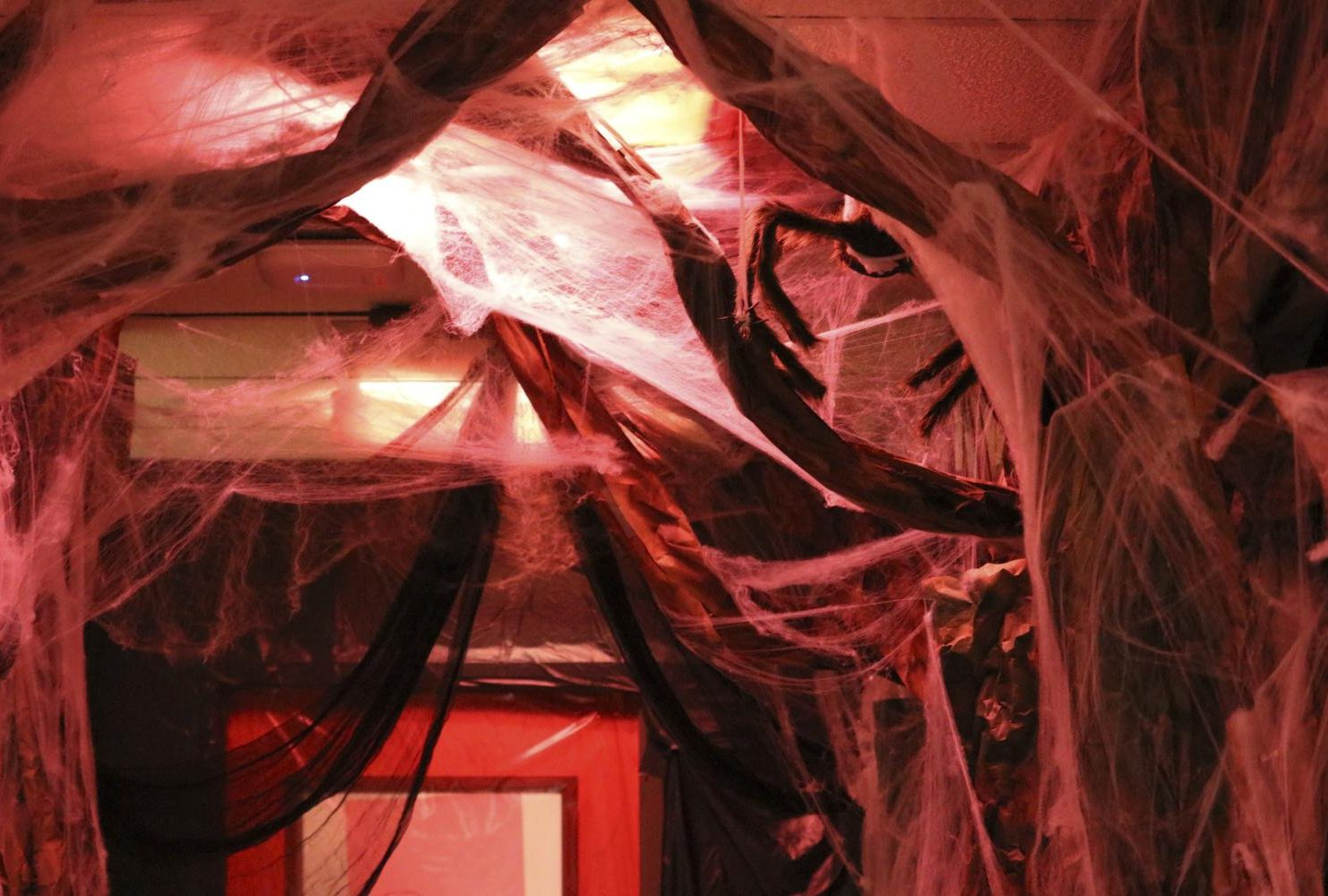 Frightening black tree-like decorations with spider webs fill the hallway of the Veterans Resource Center. (Photo by Gabe Carlos)
