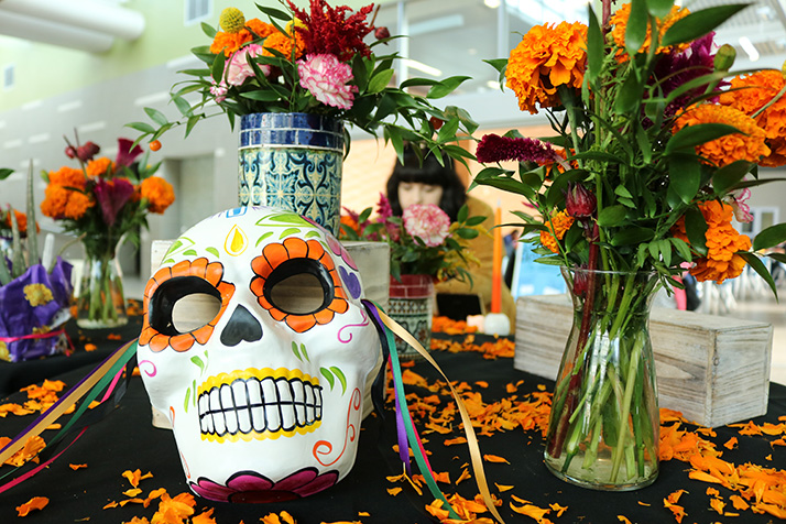 The+American+River+College+horticulture+department+celebrated+Dia+De+Los+Muertos+on+Nov.+1%2C+2018+with+a+themed+flower+sale+in+the+Student+Center.