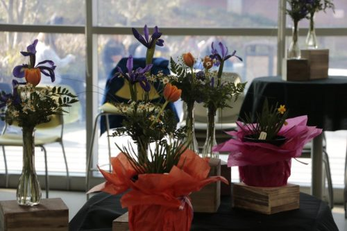 The American River College Horticulture department put on a floral sale outside the dining room in the Student Center. Flowers ranged from tulips, daisies, irises and daffodils. All proceeds support the ARC Horticulture program. (Photo by Gabe Carlos)