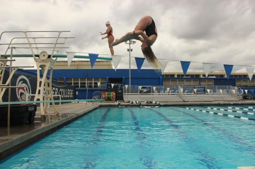 Health sciences major Amy Crayne completes a dive during a practice session at American River College on April 4, 2019. (Photo by Anthony Barnes)