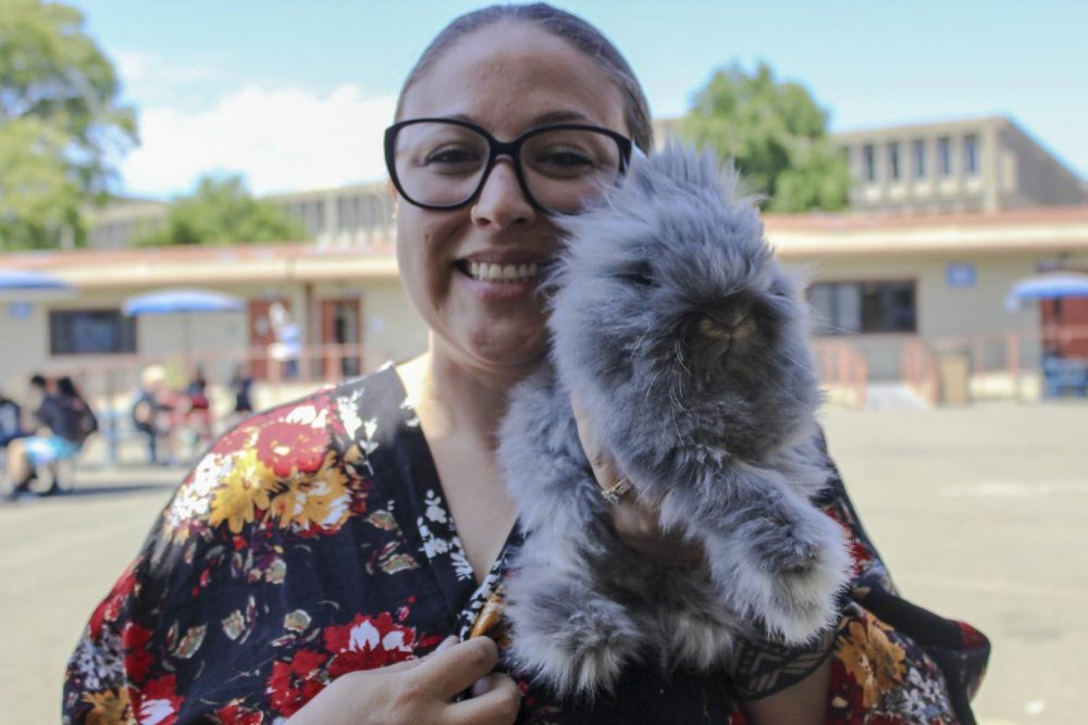 Funeral Service Education Major Jeni Haas holds her pet rabbit and emotional support animal Binky, at American River College on Aug. 28, 2019. (Photo by Emily Mello)
