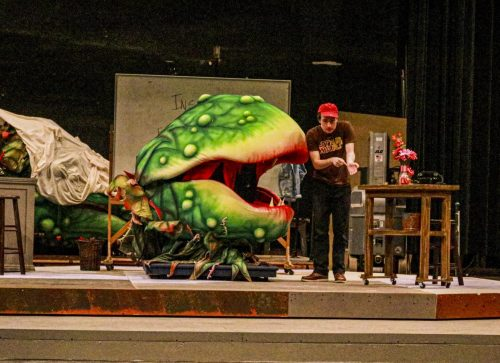 "Ethan Mack, who plays Seymour Krelborn in the American River College production ""Little Shop of Horrors,"" rehearses a scene where he shows the place on his arm where her feeds his blood to the plant monster Audrey II, puppeteered by Fetalaiga Faga at the ARC theatre on Sept. 18, 2019. (Photo by Bram Martinez)"